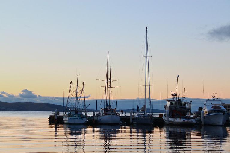 Web designer in Hobart